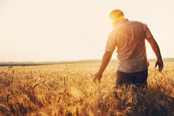Agriculteurs : une utilisation exceptionnelle de la déduction pour aléas (DPA)