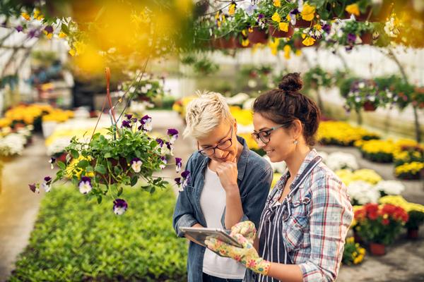 Vente de plantes et végétaux : une nouvelle obligation d'information !