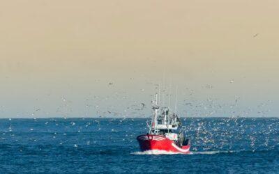 Brexit et arrêt temporaire des activités de pêche : acte 2